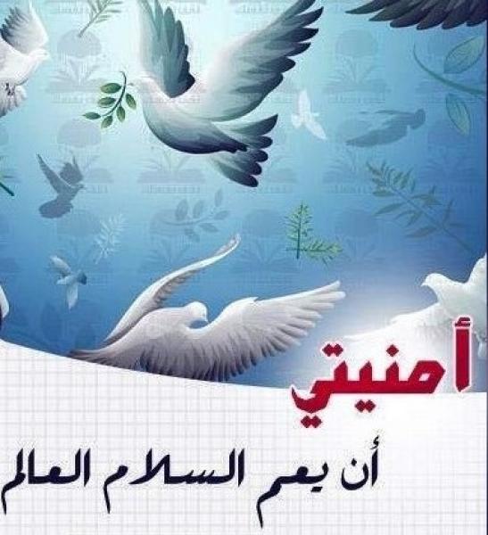 لنعمل معا من أجل السلام