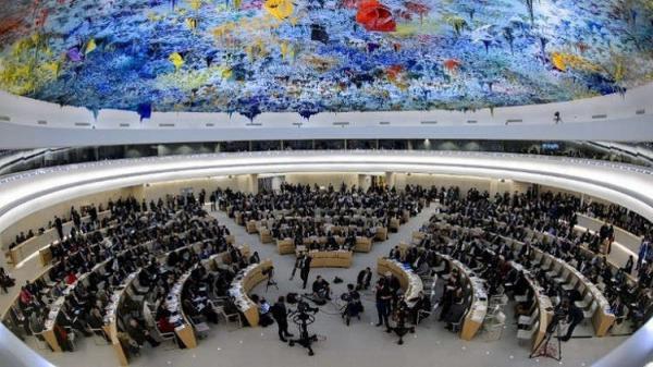 التحالف الدولي : يرحب بالتمديد للجنة الخبراء الدوليين للتحقيق ببالانتهاكات والجرائم المرتكبة باليمن