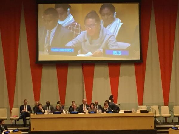 التحالف الدولي يشارك بأجتماع الأمم المتحدة بنيويورك لمناقشة أعادة الهيكلة